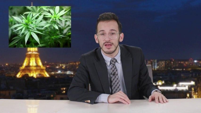 La légalisation du Cannabis en France - Cyrusly?!