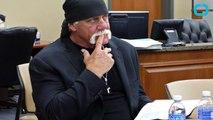 Hulk Hogan Suing Gossip Site 'Gawker'