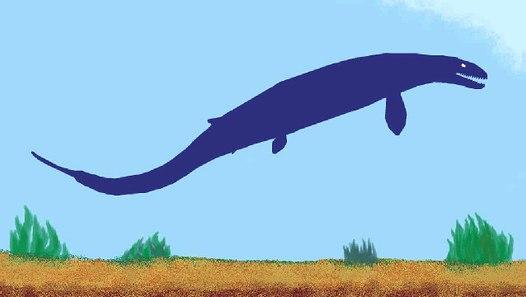 PDFC - The Redemption - Basilosaurus vs. Xiphactinus ...