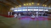 judo show open régional Rhône Alpes de jujitsu