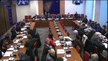 Commission des affaires sociales : application de la loi formation professionnelle, emploi et démocratie sociale