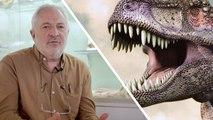 Interview : 5 idées fausses sur les dinosaures