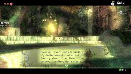 Zelda Twilight Princess HD #5