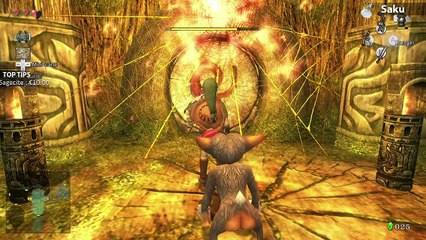 Zelda Twilight Princess HD #6