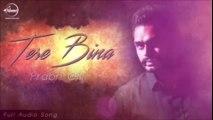 Tere Bina--New Song--Full Audio--Prabh Gill--New Punjabi Song--Official Music--Latest Song 2016--Music Masti-Dailymotion