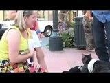 Videos divertidos de animales y mascotas....amigos de verdad