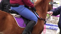 VIDEO. L'équitation adaptée part au galop à Lamotte-Beuvron