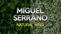 Miguel Serrano - Logical Rhythm (Original Mix)