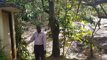 École Ambal Tamil Vidyalayam (Sri Lanka)