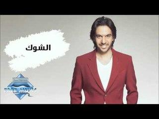 Bahaa Sultan - El Shouk (Audio)   بهاء سلطان - الشوك