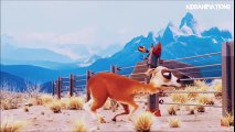 Caminandes || Animation Movie || 3D Animated Short Film [HD]  Meilleurs Dessins Animés