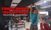 Vücut Geliştirme Hareketleri - Standing Dumbbell Triceps Extension