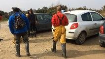Quatre marsouins sauvés de l'échouage