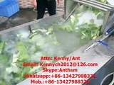 QX-32 cabbage spinach lettuce  washing machine, washer, cleaner, air bubble washing cleaning machine
