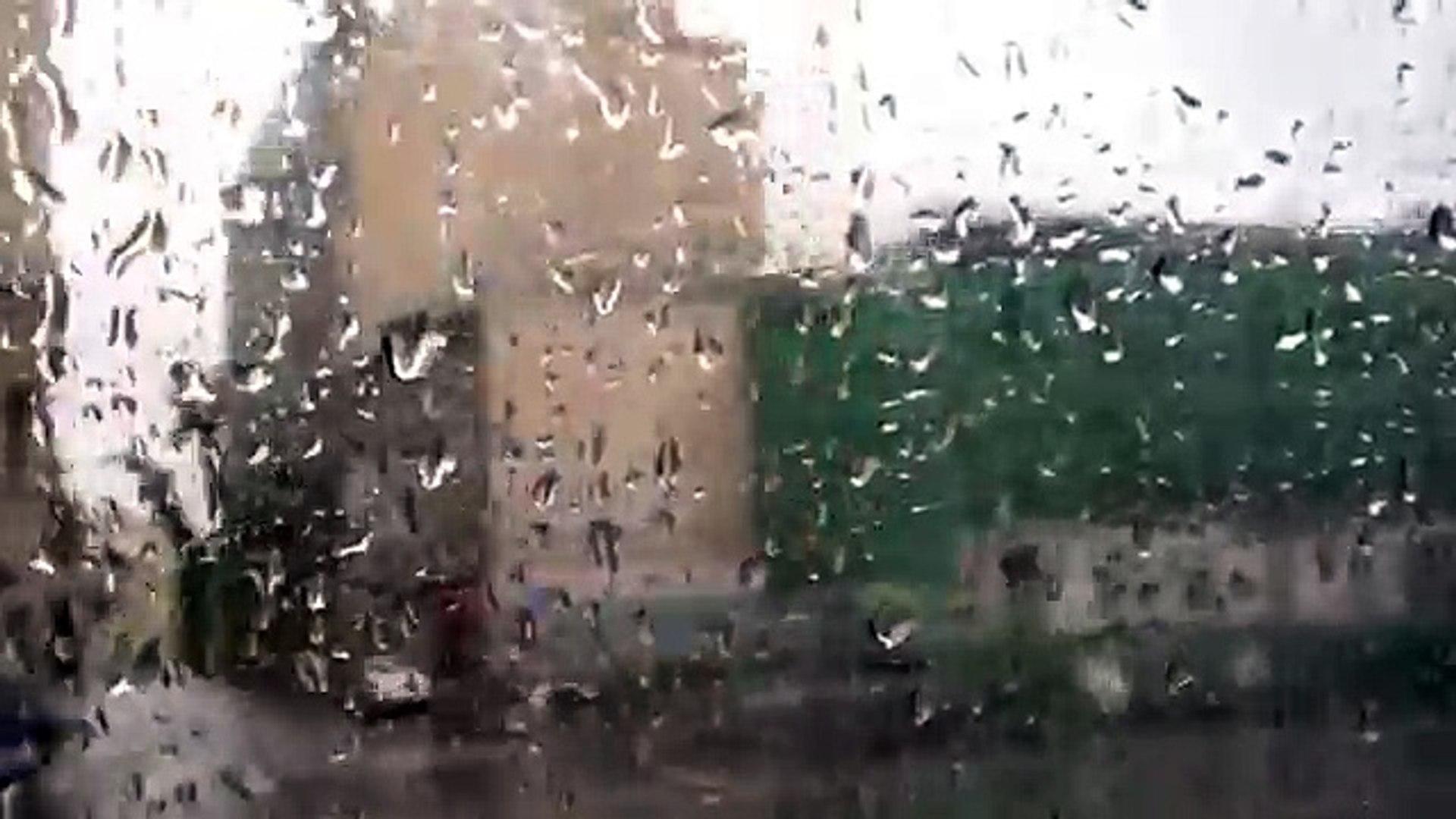 1 По Москве  Вид из окна автобуса