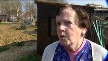 Dijon : le soleil fait pousser les jardiniers, dans les jardins ouvriers