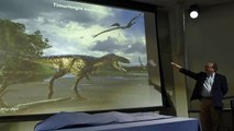 Pregnant T. Rex May Retain DNA