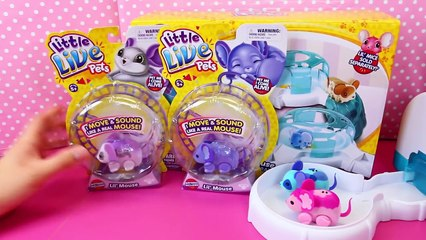 Little Live Pets Lil Mouse House Trail Track Set Tubes ❤ Baby Mice Moose Toys Review Disn
