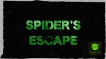 """Spider's Escape, the Ultra Short (Сверх короткометражный фильм """"Побег паука"""") [2016]"""