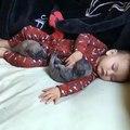 Ces deux petits chiots se blottissent contre ce bébé humain. Mais lorsqu'il commence à se réveiller...? ADORABLE !