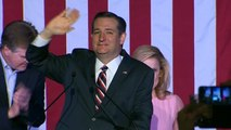 Lindsey Graham throws support behind Ted Cruz
