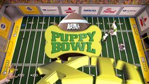 Watch What Happens When Puppy Andy Cohen Takes the Field