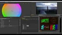 Cinematic Film Look DJI Phantom 4 with standard & Color