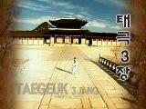 Taekwondo Poomsae Taeguk 3 ( Sam Jang )