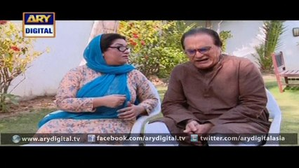 BulBulay - Episode 391 - March 20, 2016