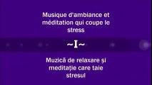 Musique d'ambiance et meditation qui coupe le stress - Muzică de relaxare și meditație care taie stresul ( Partea I )