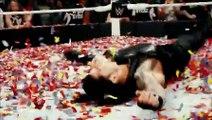 Roman Reigns vs Sheamus Wrestling