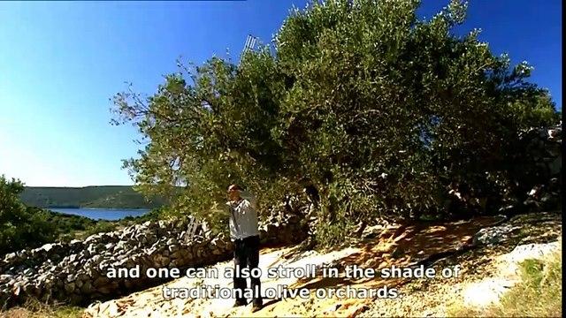 Vransko lake - National Park / Nature Park, Biograd na Moru