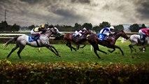 Guia de apuestas en carreras de caballos como apostar en las carreras de caballos
