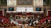 Projet de loi Liberté de création, architecture et patrimoine : deuxième lecture à l'Assemblée Nationale
