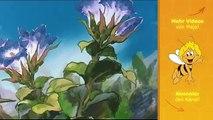 Die Biene Maja - Folge 44 - Von der Maulwurfsgrille, die keiner zum Freund haben wollte