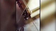 Un employé se filme en train d'uriner dans des céréales