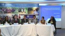 ONU alerta sobre violencia de grupos armados en Colombia tras pa