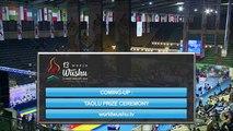 Чемпионат Мира по ушу таолу 2015 г  aрена 2  день 4 44