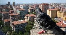 Konut Satışları Şubat Ayında Yüzde 7 Arttı, İstanbul En Çok Ev Satılan İl Oldu