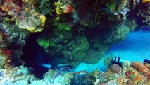 Scuba Diving in Cozumel, Mexico.  Palancar Caves Reef.  GoPro Hero4 Sivler.