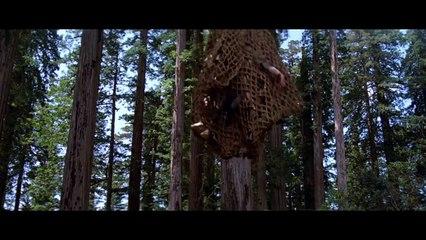 Cinematic Getaways: Endor (2015) HD