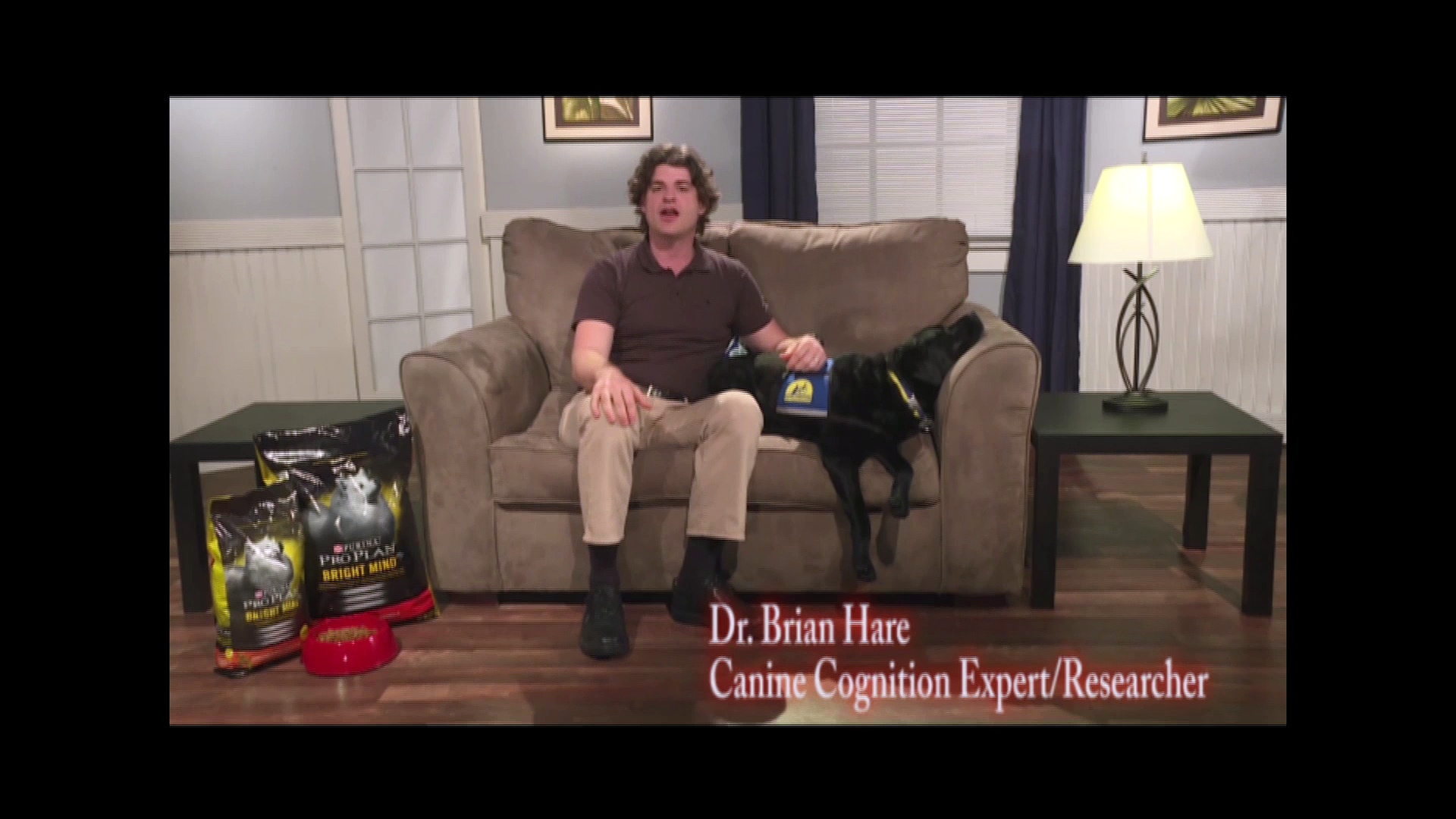 DOG BRAIN HEALTH