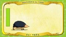 Multipedia der Tiere. Buchstabe I der Igel