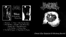 Lost Life - Odium (The Downfall of the Bleeding Hearts)