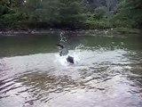 Jack diving for rocks!