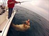 Вот это рыбалка. Ловля монстров на спиннинг