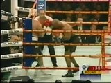 MIKE TYSON VS. BRIAN NIELSEN (2001) - Boxing Fight Fighting MMA Mixed Martial Arts Sports Match