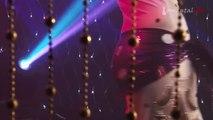 Egyptian Bellydancer Sahar Performence V