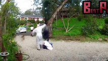 Funny Videos - Funny Pranks - Best Funny Crazy Scary Pranks 2015