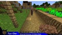Minecraft: Windows 10 Edition Beta